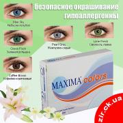 Maxima Colors